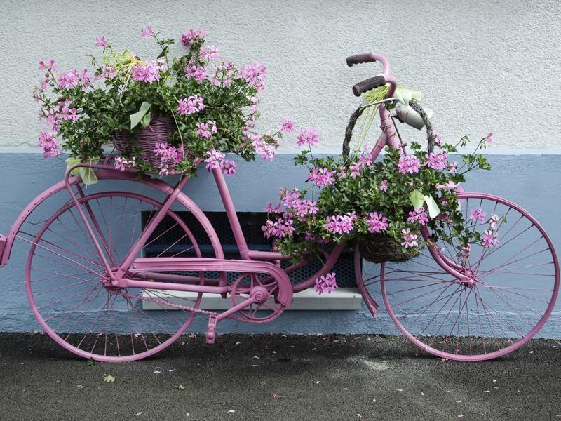 Flores y bicicletas - Bicicleta macetero ...