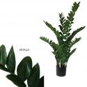 Plantas verdes pequeñas