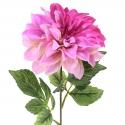 Colección Ever Bloom